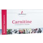 carnitine momentum sensas