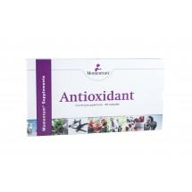 antioxidant_momentum_amstelveen